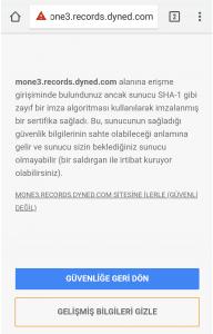 Dyned Analytics Rapor Alma