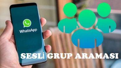 whatsapp sesli grup araması