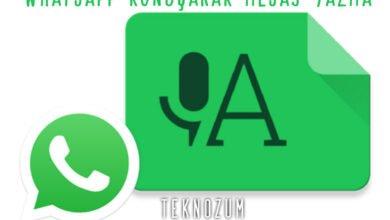 Whatsapp Konuşarak Mesaj Yazma